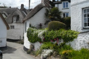 Cottages by the Shipwright's Arms